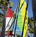 Key West Sail Colors by Bob Slitzan