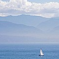 Colors Of Alaska - Sailboat And Blue by Natalie Rotman Cote