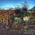Colors Of Autumn by Charlene Mitchell