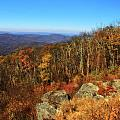 Colors Of Autumn In Shenandoah National Park by Dan Sproul