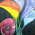 Colors Of Calla Lillies by Betty and Kathy Engdorf and Bosarge