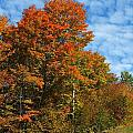 Colors Of Fall 4 by Gene Cyr