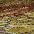 Colors Of Painted Hills by Lee Sage