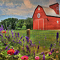 Colors Of Summer by Lori Deiter