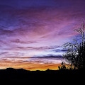 Colors Of The Night by Nancy Marie Ricketts