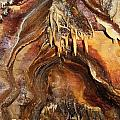 Colors Of The Ohio Caverns by Dan Sproul