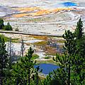 Colors Of Yellowstone by Ausra Huntington nee Paulauskaite