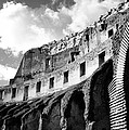 Colosseo by Raul Belles Tena