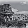 Colosseum by David Pringle