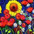 Colour Cluster by John  Nolan