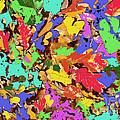 Coloured Oak Leaves By M.l.d. Moerings 2009 by Marion Moerings