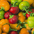 Colourful Mini Bell Peppers by Vishwanath Bhat