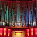 Colourful Organ by Jenny Setchell