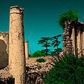 Colourful Ruins by Salman Ravish