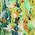 Colours Experiments by Ilir Jacellari
