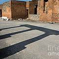 Column Shadows Forum At Pompeii Italy by Dan Hartford