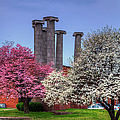 Columns And Dogwood Trees by Larry Braun