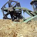 Combine Harvester  by Shay Fogelman