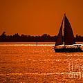 Come Sail Away by Edward Fielding