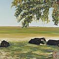 Commanche National Grasslands La Junta Colorado by David  Llanos
