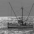 Commercial Fishing Boat Dickey Byrd Out Of Half Moon Bay by Scott Lenhart
