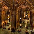 Commons Room Cathedral Of Learning University Of Pittsburgh by Amy Cicconi