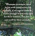 Compassion Quote by Linda L Martin