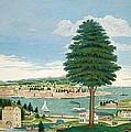 Composite Harbor Scene With Castle by Jurgen Frederick Huge