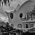 Conch Casa by Keri West