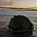 Conch Shell And Pier 2 10/17 by Mark Lemmon