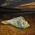 Conch Shell And Pier Predawn 2 10/18 by Mark Lemmon