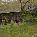 Concord Covered Bridge by Mike Fitzgerald