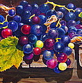 Concord Grapes On A Step by Sarah Luginbill