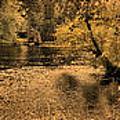Concord River At Old North Bridge by Nigel Fletcher-Jones