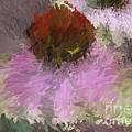 Cone Of Beauty Art by Deborah Benoit