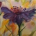Coneflower by Bonnie Schallermeir