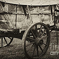Conestoga Wagon by Paul W Faust -  Impressions of Light