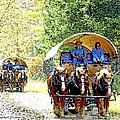 Conestoga Wagons by A Gurmankin