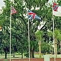 Confederate - Flags Of My Ancestors by Wayne Nielsen