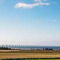 Confederation Bridge by Trever Miller