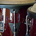 Congas by Paulette B Wright