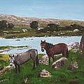 Connemara Ponies by Tony Gunning