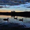 Conneticut Lake by Jes Fritze