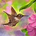 Connie's Hummingbird by Wanda Pepin