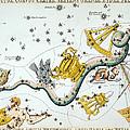Constellation: Hydra by Granger