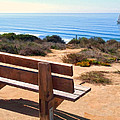 Contemplation Bench At The Oceans Edge by Elaine Plesser