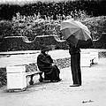 Conversation In The Rain by Madeline Ellis