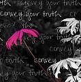 Convey Your Truth by Lauren Radke