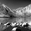 Convict Lake Pano In Black And White by Lynn Bauer
