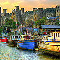 Conwy Castle And Harbour by Mal Bray